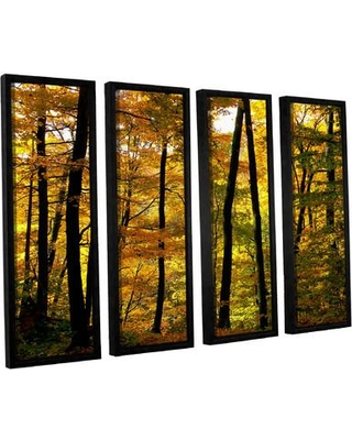 "Darby Home Co Fall Colors 4 Piece Framed Photographic Print Set DRBC7579 Size: 36"" H x 48"" W x 2"" D"