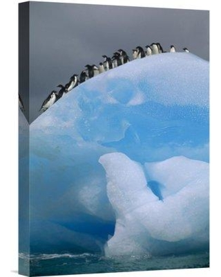"""East Urban Home 'Adelie Penguin Group Resting on Blue Antarctica' Photographic Print EAUB5707 Size: 18"""" H x 12"""" W Format: Wrapped Canvas"""