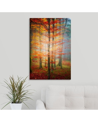GreatBigCanvas Autumn's End by Philippe Sainte-Laudy Canvas Wall Art, Multi-Colored