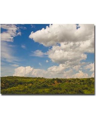 "Trademark Fine Art ""Middle of Nowhere"" by Ariane Moshayedi Photographic Print on Canvas AM0036-C Size: 30"" H x 47"" W x 2"" D"