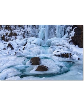 """Trademark Fine Art 'Frosty Falls' Photographic Print on Wrapped Canvas ALI3782-C Size: 12"""" H x 19"""" W x 2"""" D"""