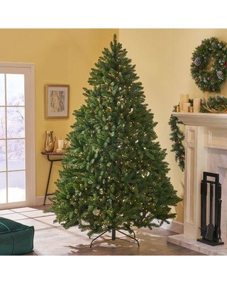 The Holiday Aisle 7' Green Spruce Artificial Christmas Tree with 700 Clear Lights W000853474