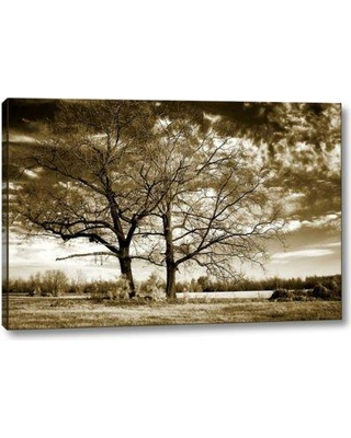 """Winston Porter 'Rolesville Oaks' by Alan Hausenflock Giclee Art Print on Wrapped Canvas BF099377 Size: 16"""" H x 24"""" W x 1.5"""" D"""