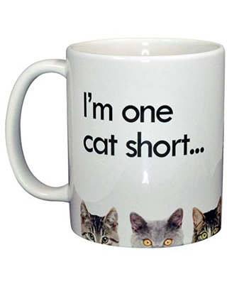 Big Deal On Crazy Cat Lady Coffee Or Tea Mug