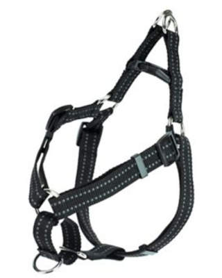 Premier Pet™ Small Step-In Dog Harness in Black