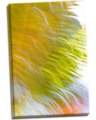 Ebern Designs 'In Motion I' Graphic Art Print on Wrapped Canvas BF050317