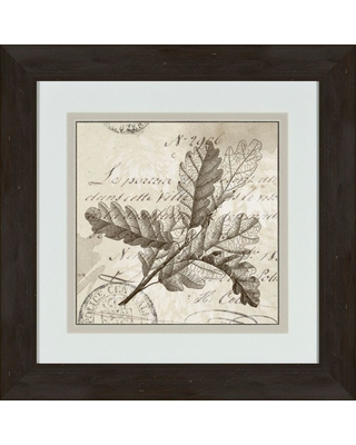 """Ptm Images 17 in. x 17 in. """"Sophisticated Botany D"""" Framed Wall Art, Dark brown"""