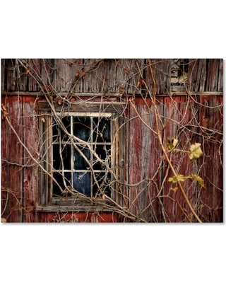 """Millwood Pines 'Old Barn Window' Photographic Print on Wrapped Canvas MLWP4276 Size: 14"""" H x 19"""" W x 2"""" D"""
