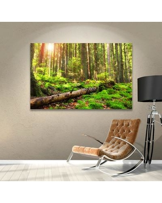 """Charlton Home 'Back to Green' Photographic Print on Wrapped Canvas CHLH7943 Size: 32"""" H x 48"""" W"""