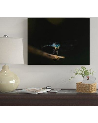 """Winston Porter 'The Little Animals (104)' Photographic Print on Canvas BF120560 Size: 24"""" H x 30"""" W x 2"""" D"""