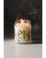 Pressed Botanical Candle - Green at Urban Outfitters