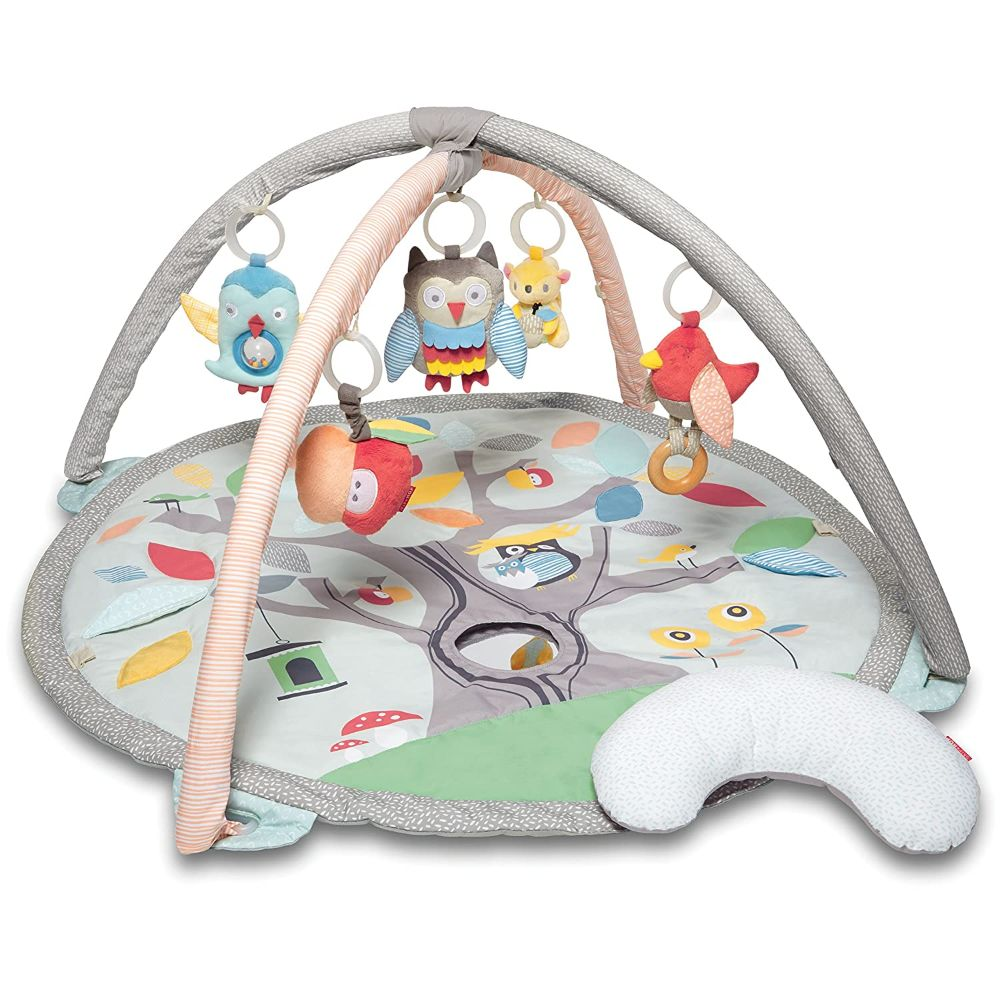 Play Mat and Activity Gym