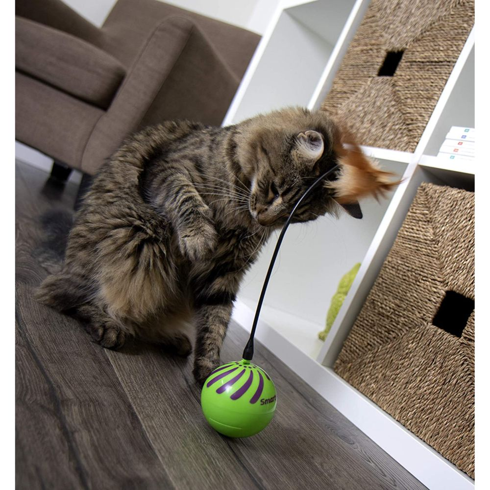 Electronic Motion Cat Toy