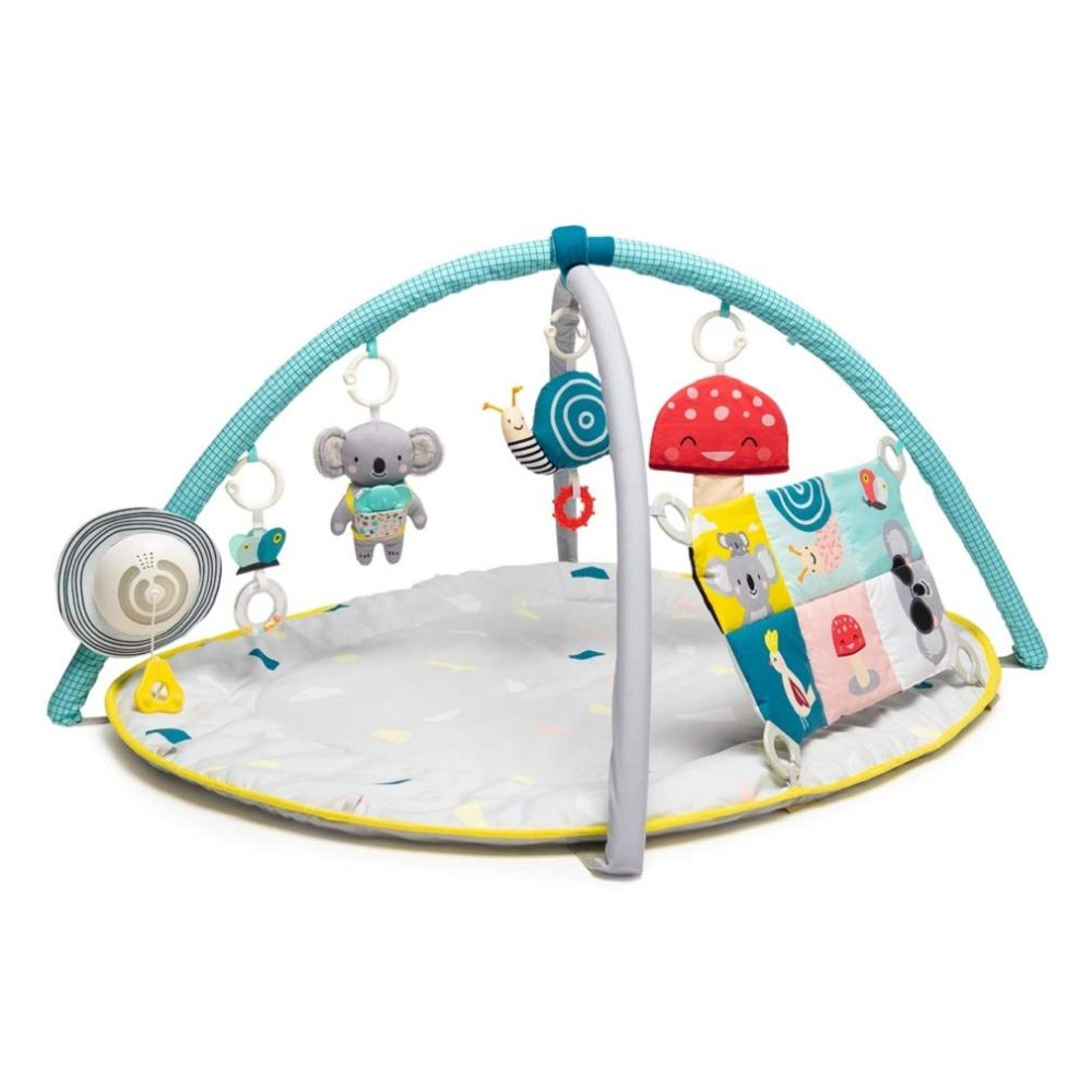 Music and Light Activity Gym