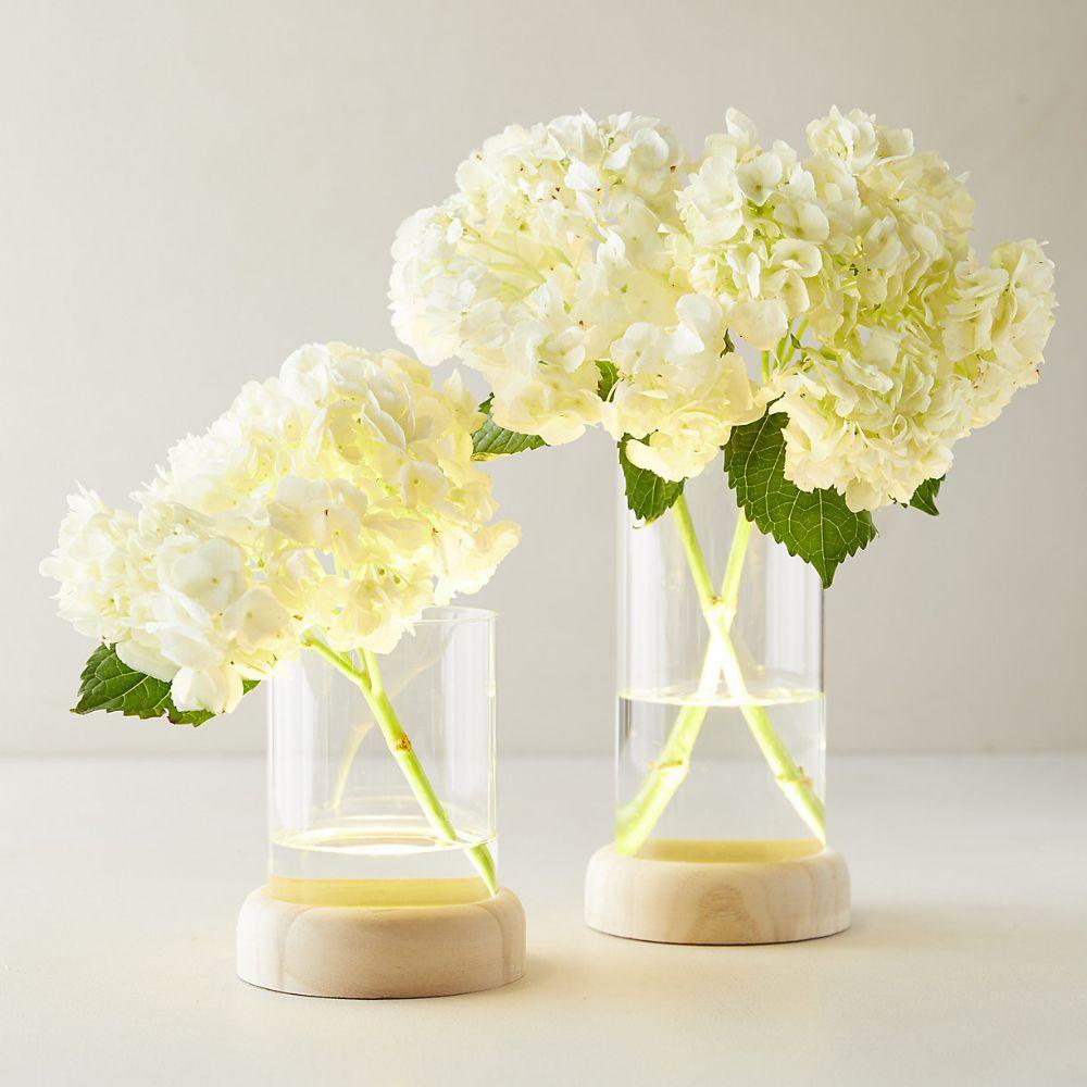 LED Vases on Wood Stands