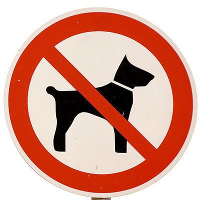 no-dog-sign