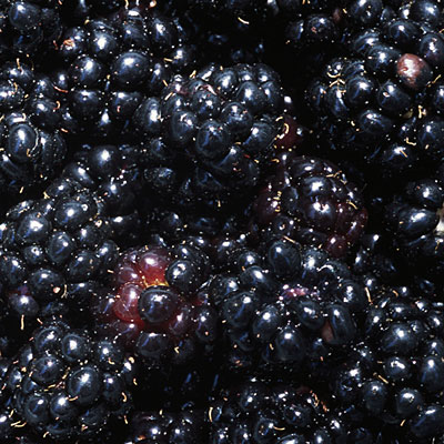 eat-black-raspberries