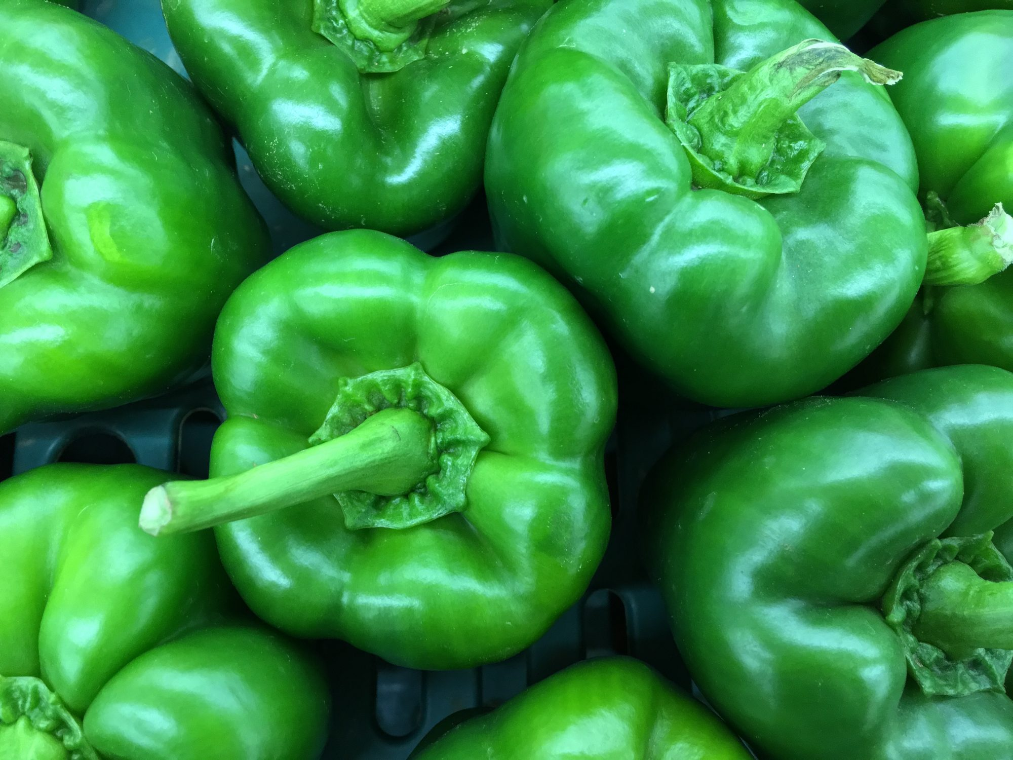 green-peppers-weight-loss