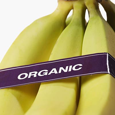 Want to steer clear of GMOs? Buy organic