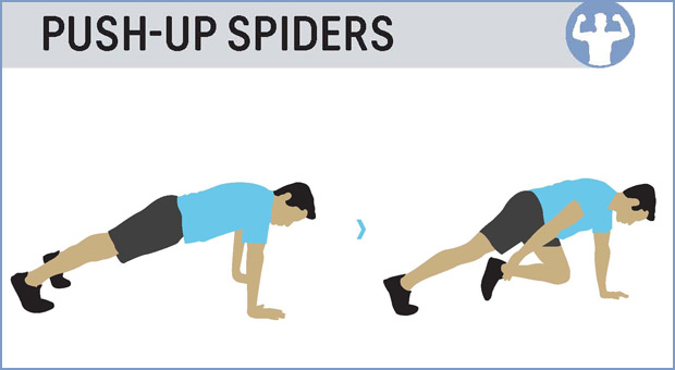 push-up-spiders.jpg