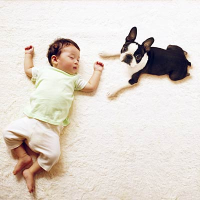Pets may prevent allergies in children