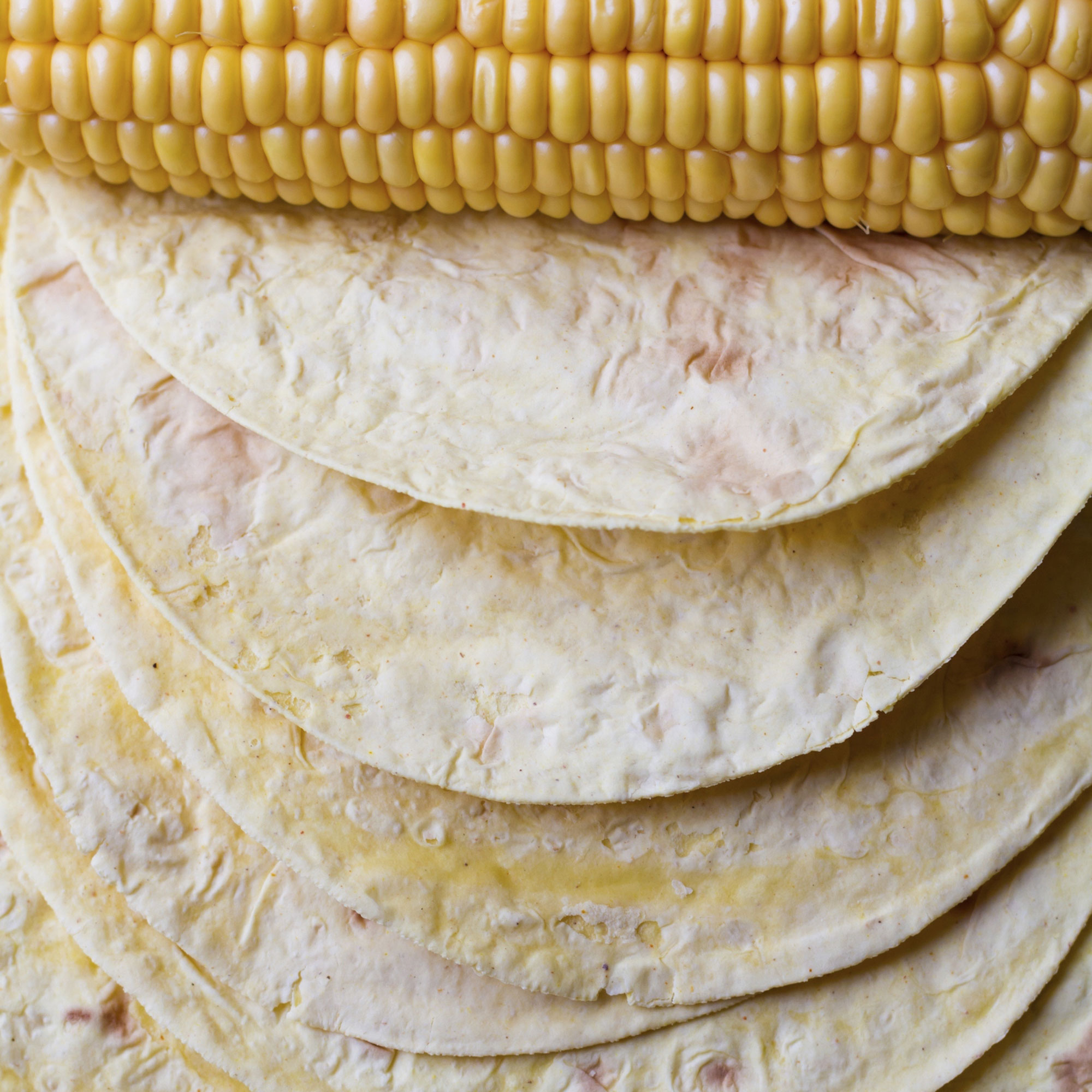 corn tortilla