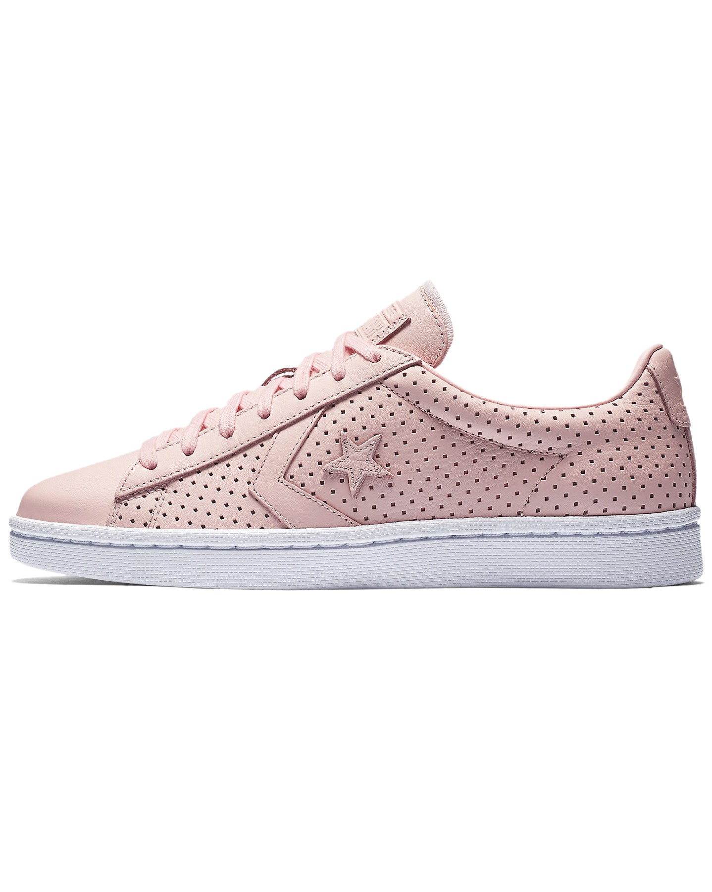 Converse Pro Leather Botanical Gardens Low Top