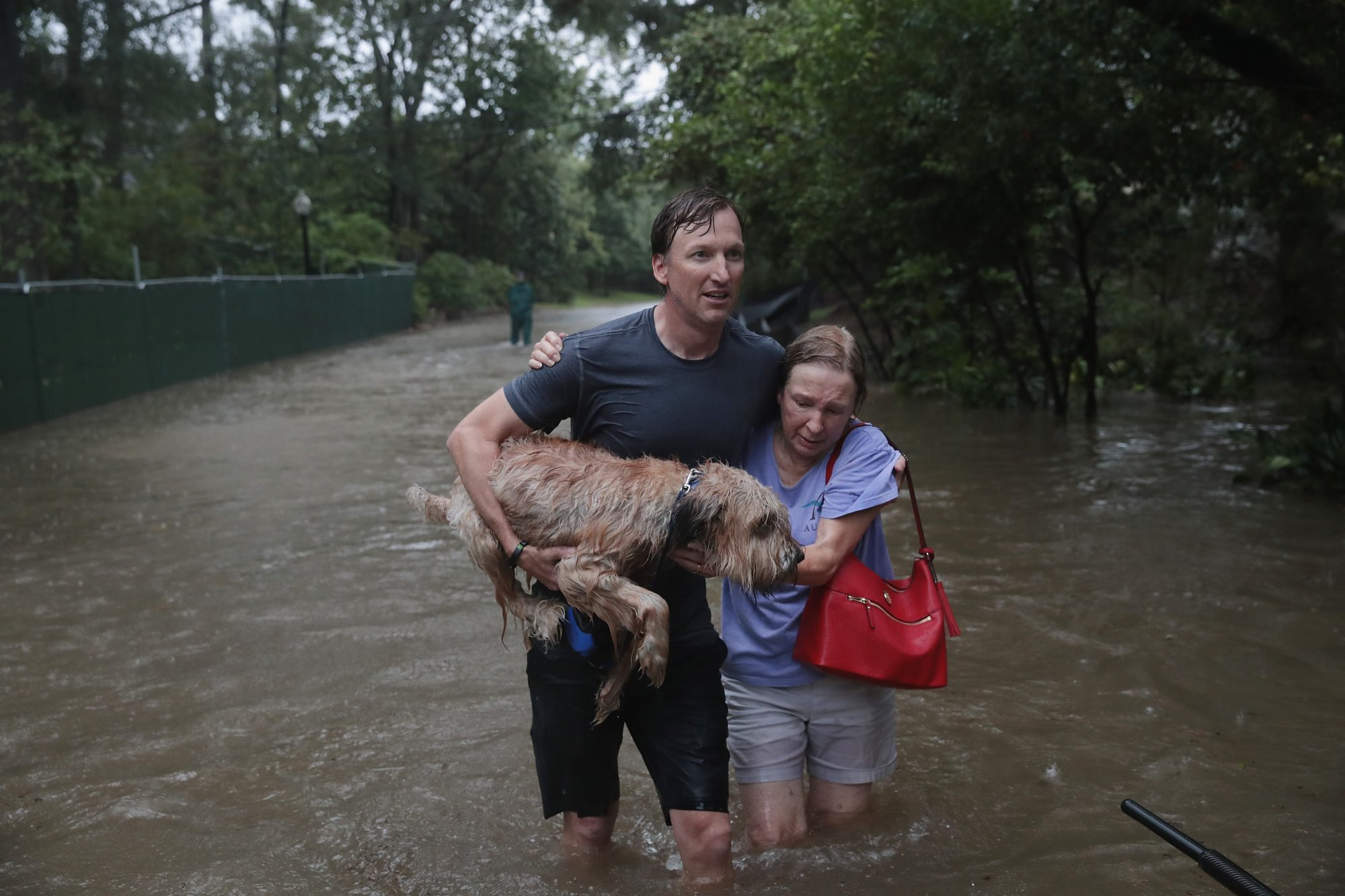 hurricane-harvey-dog-couple