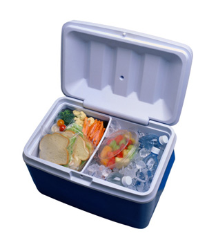 Plastic picnic cooler with prepared foods and water on ice
