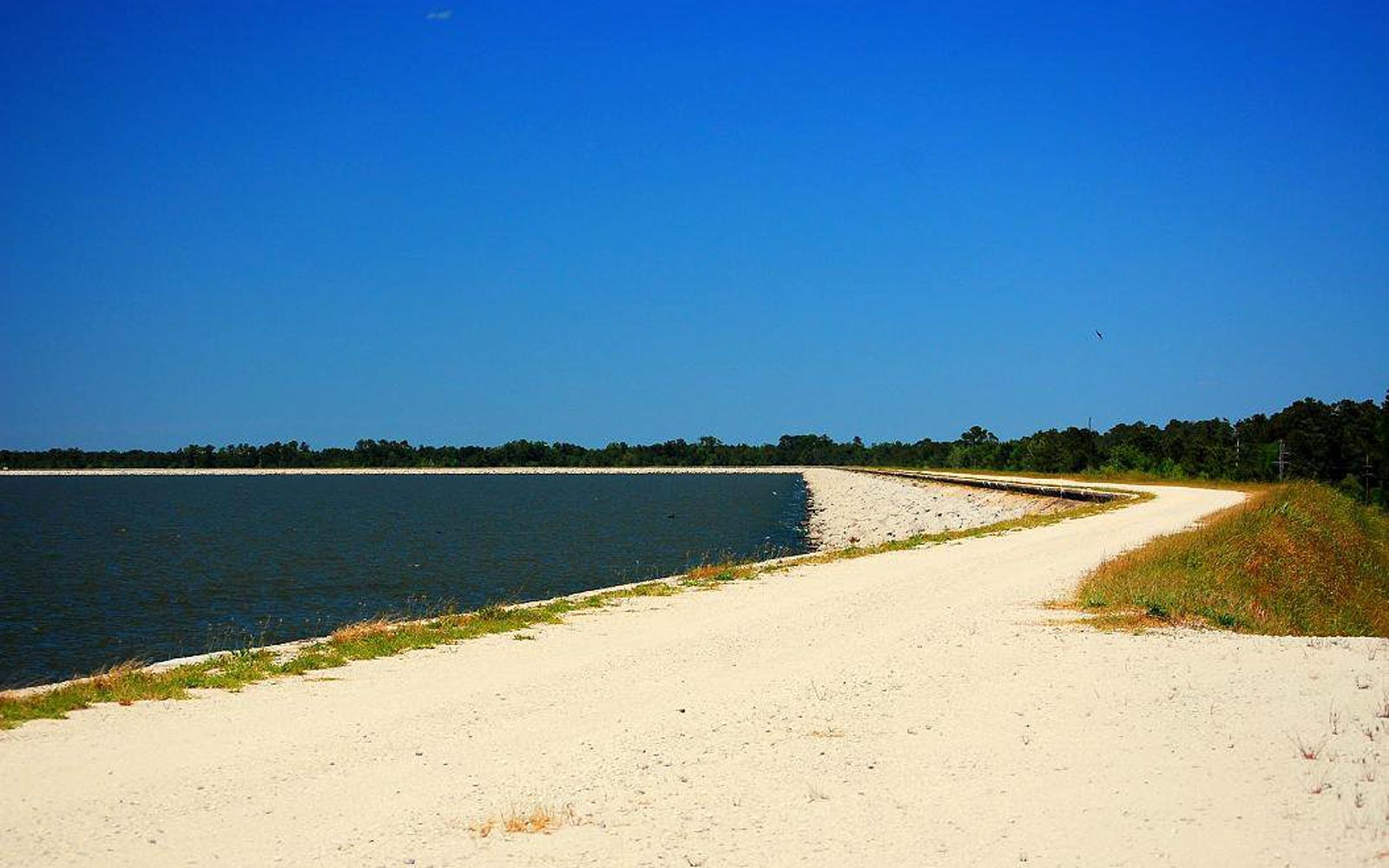 Hike the Palmetto Trail with an Eclipse – Lake Moultrie, South Carolina