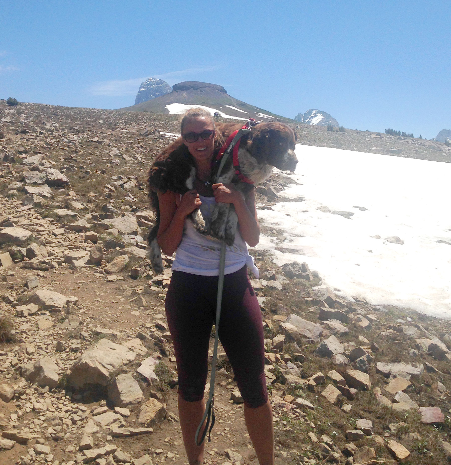 Hiker Fights Snow, Rain and Rough Terrain to Carry Injured Lost Dog Down Mountain to Safety