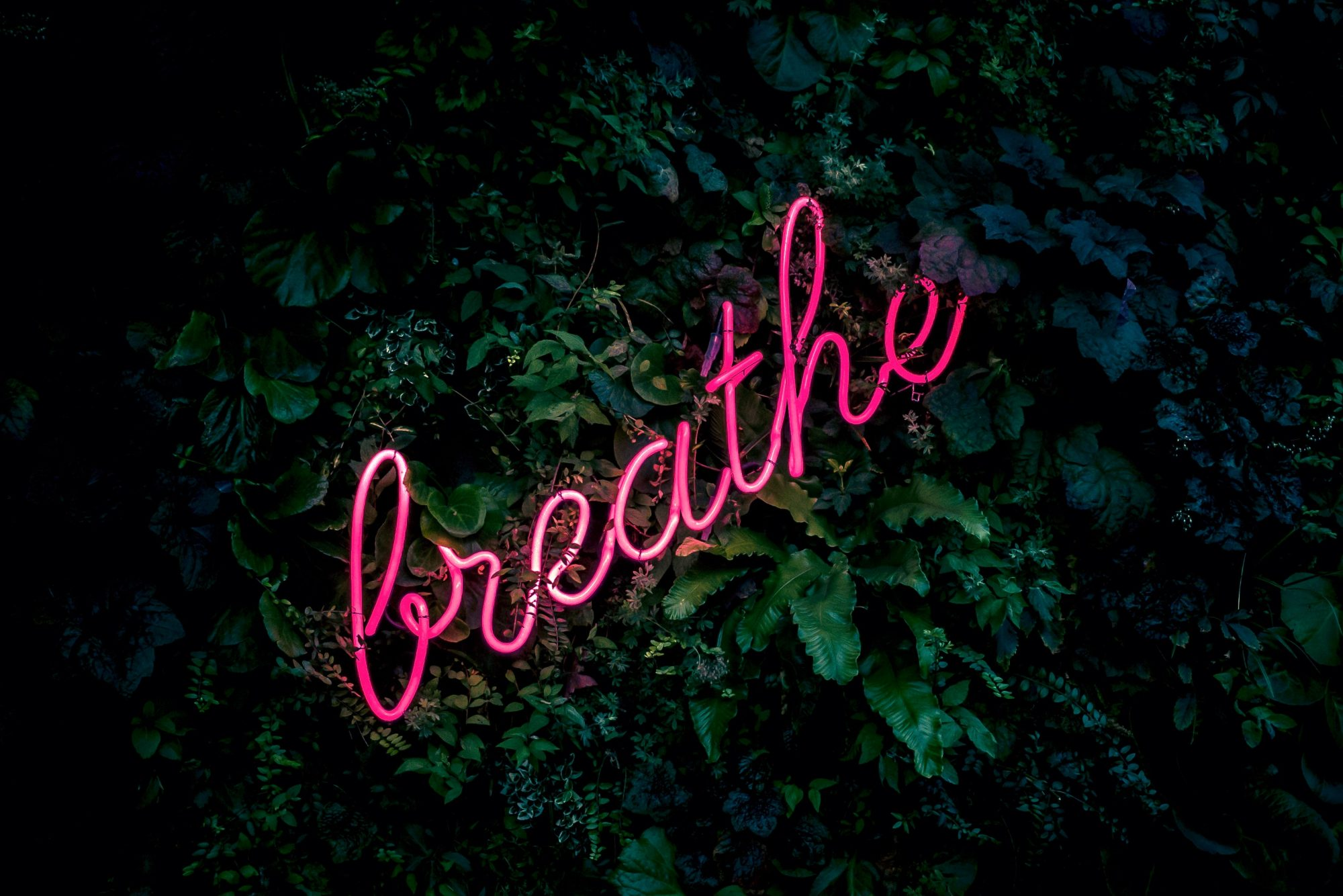 neon-breathe-sign-tim-goedhart