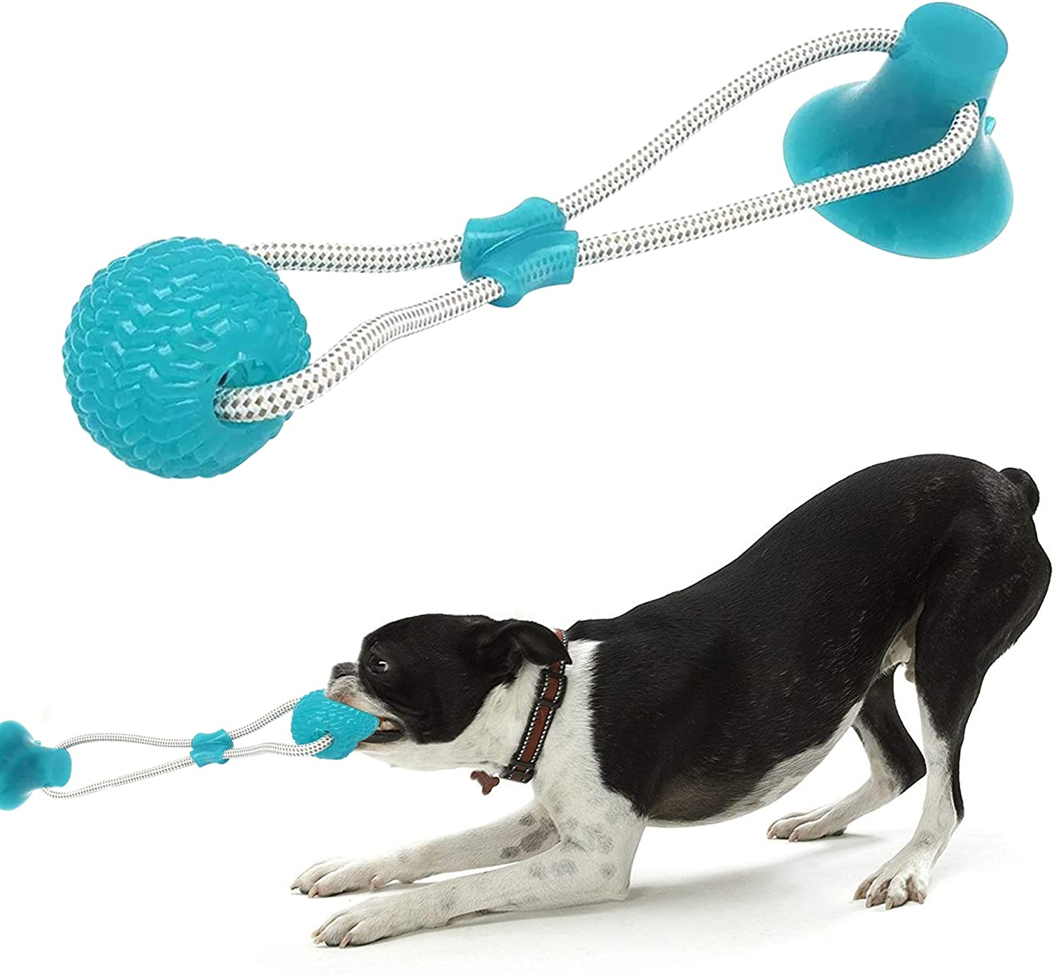 Smart Dog Suction Cup Tug Toy