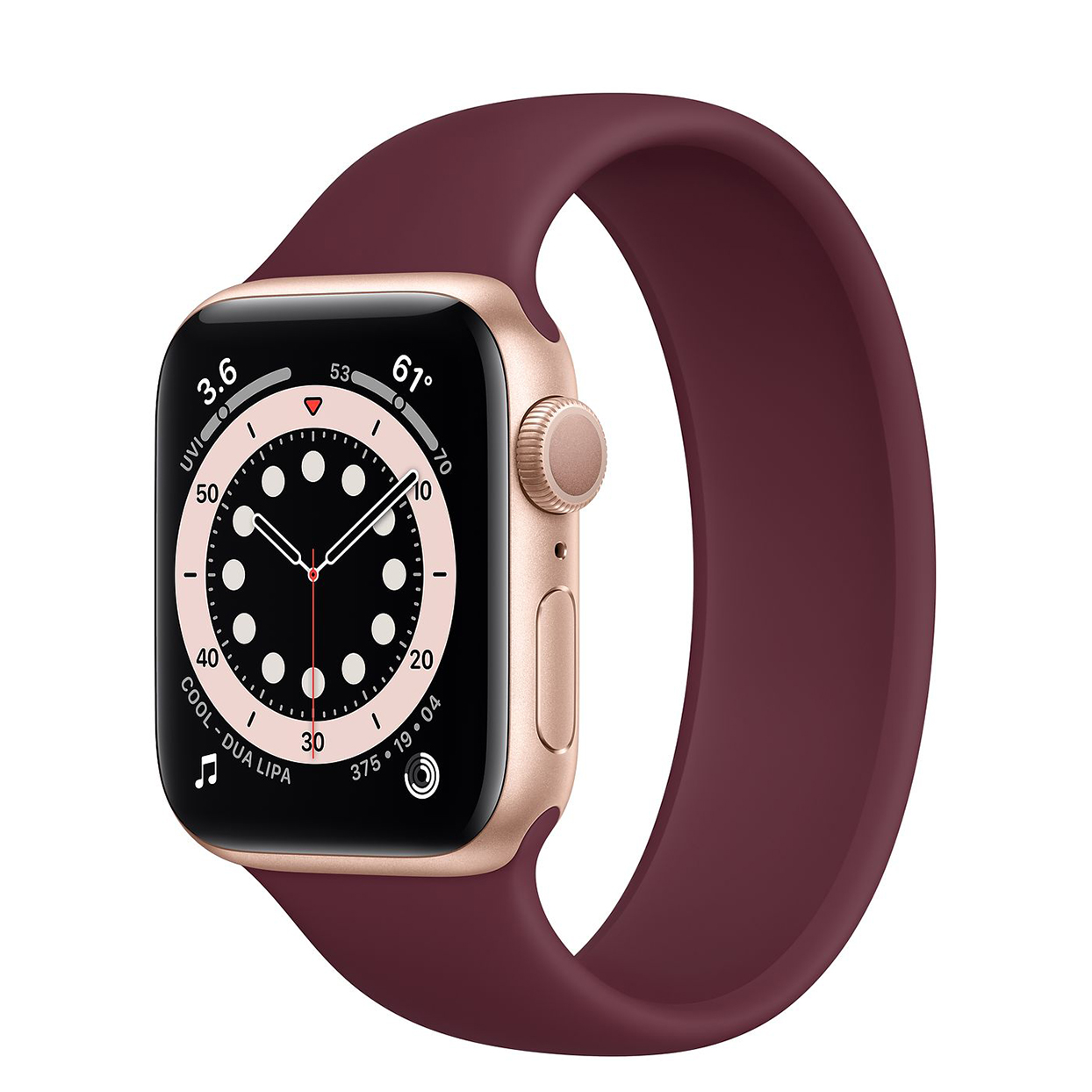 apple watch series 6 embed