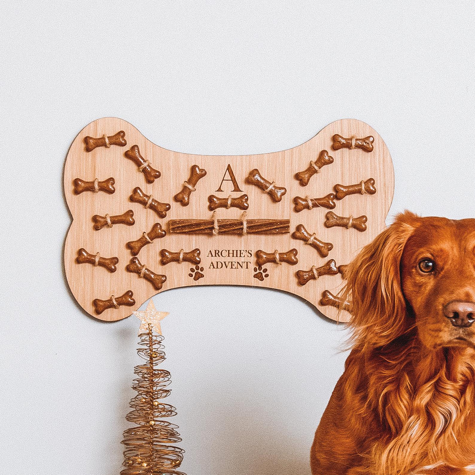 dog advent calendar bone
