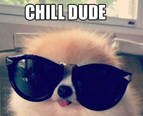 Chill-dude