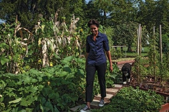4bc74d6af70a6c25_700_michelle-obama-in-the-garden.preview