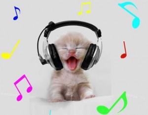 cat-with-headphones-300x234