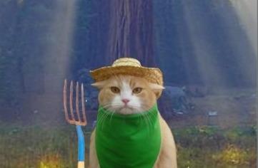 funny_earth_day_american_gothic_green_cat_postcard-r8779e0aefc084087bfbb1e5969d64a2a_vgbaq_8byvr_512