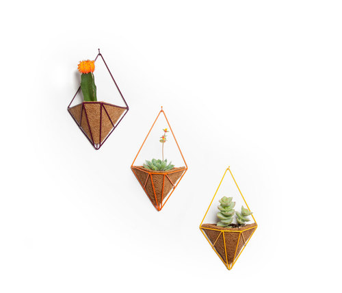 mini_pendants_hedge_3