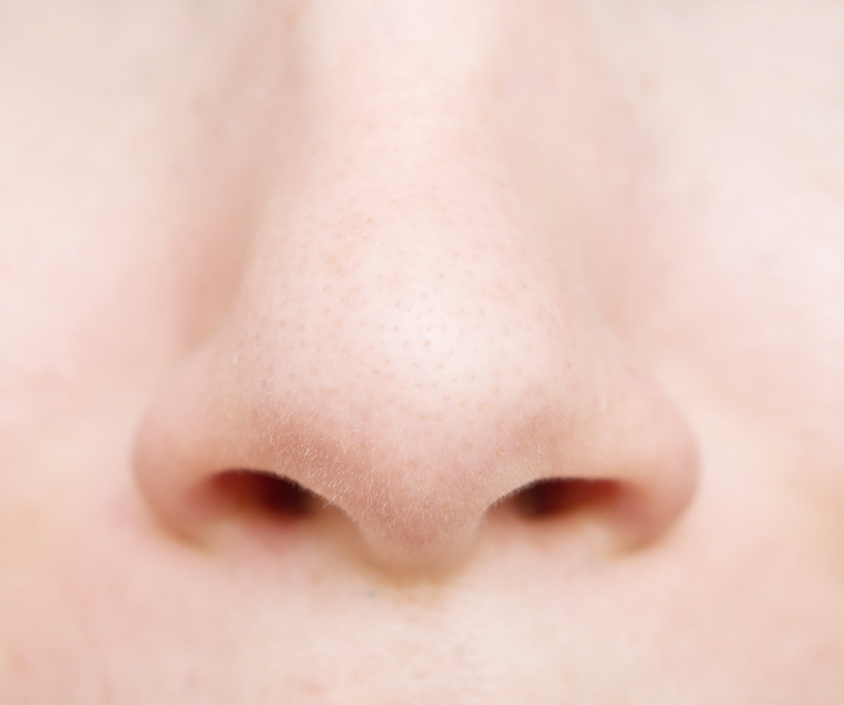 woman nose