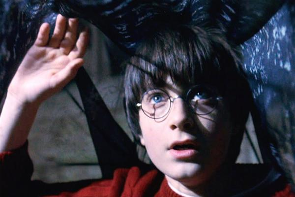 Picture of Harry Potter Under Invisibility Cloak