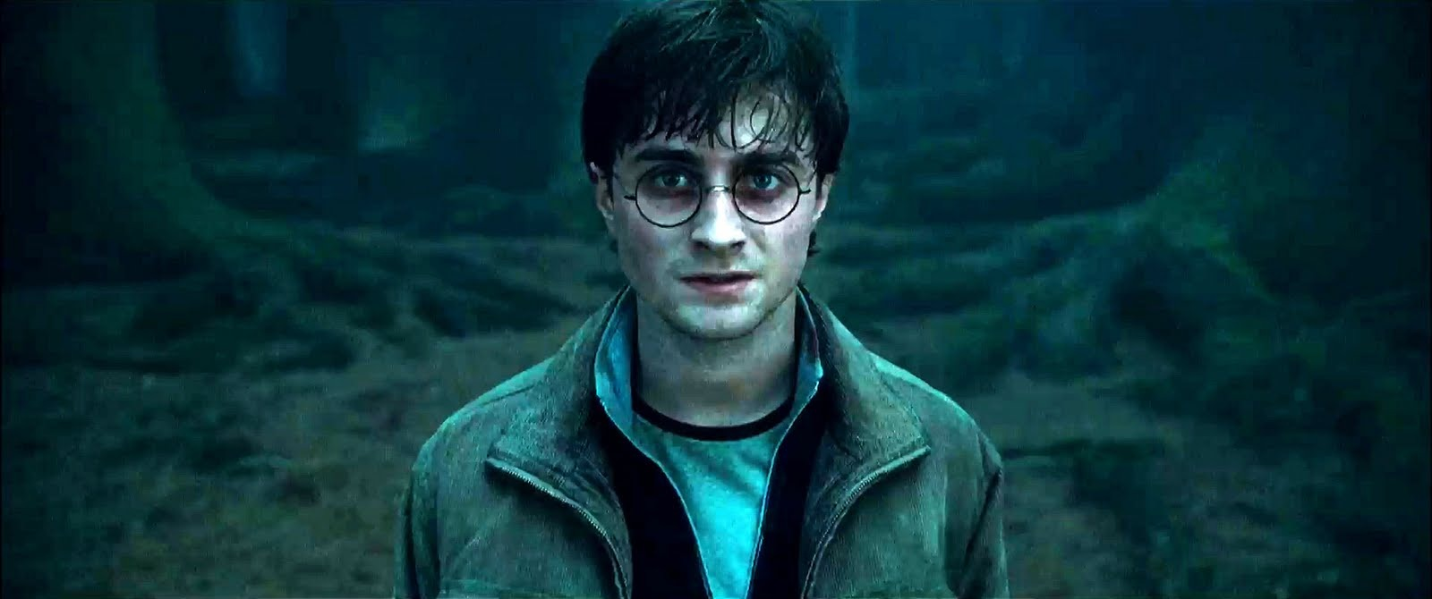 harry-potter-and-the-deathly-hallows41