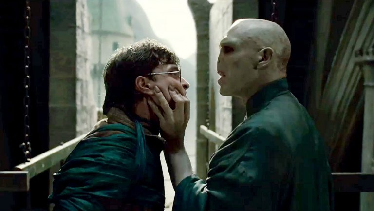 Picture of Harry Potter and Voldemort