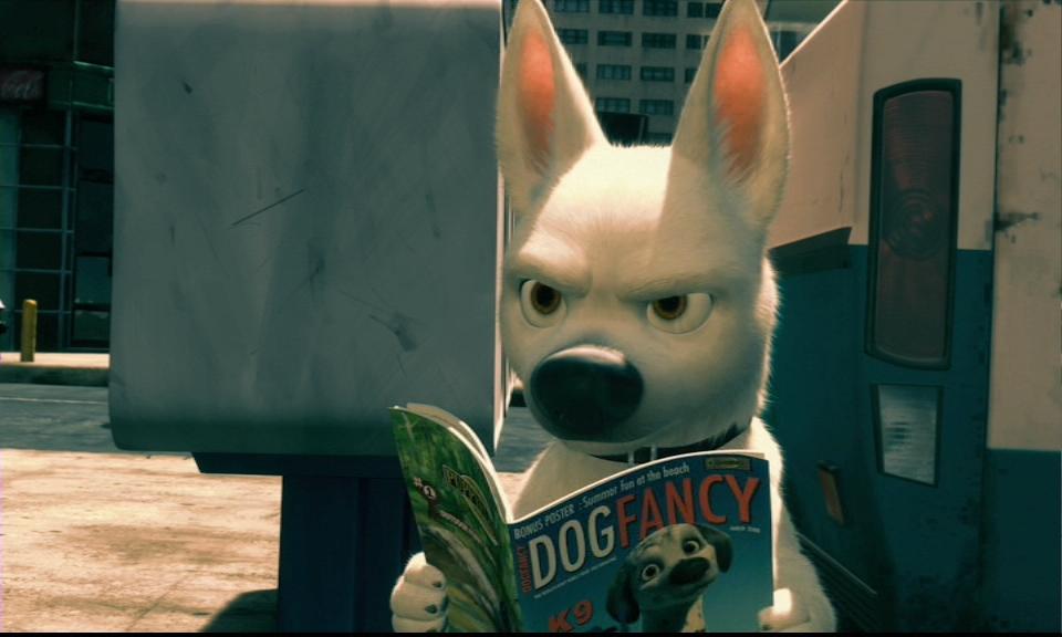 Bolt-Reading-Dog-Fancy-disneys-bolt-10655280-960-576