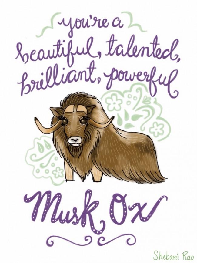 musk-ox-signed-e1452634066779.jpg