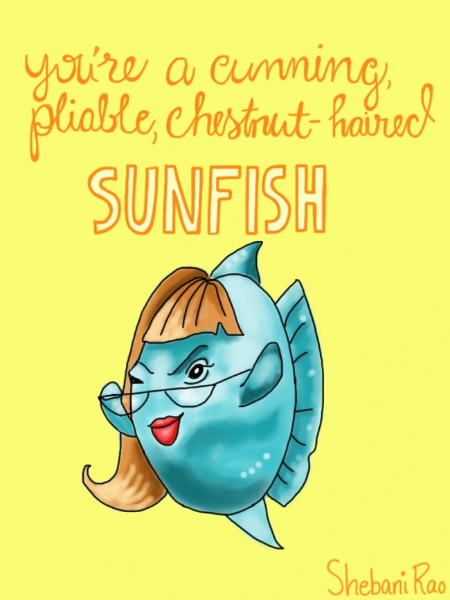 sunfish-signed-e1452635084549.jpg