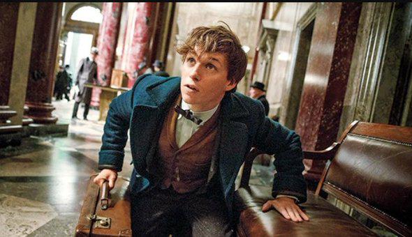 Picture of Eddie Redmayne as Newt Scamander