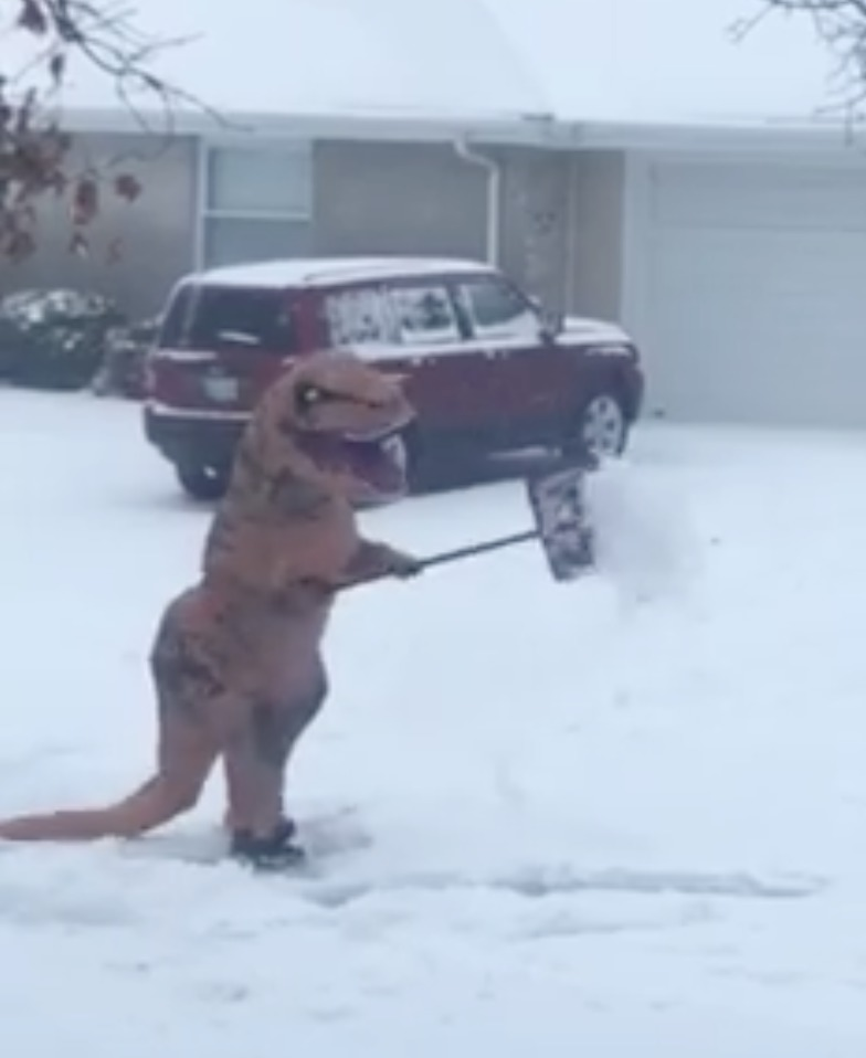 Picture of t-rex Shoveling Snow
