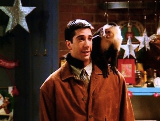 Picture of Ross Geller and Marcel